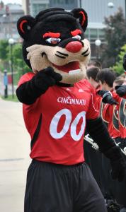 Cincinnati_Bearcat